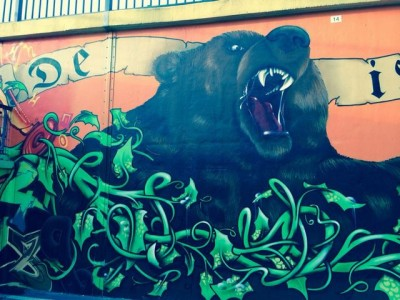 Grafitti-Projekt: Lichtenberger Brücke 15